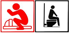 squat toilet vs western sit down toilette