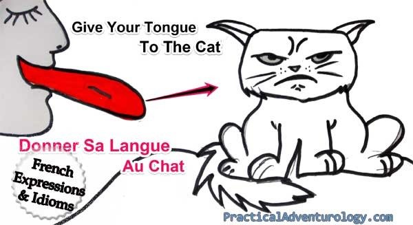 15 funny french idioms and expressions; Give your tongue to the cat. Donner sa langue au chat!