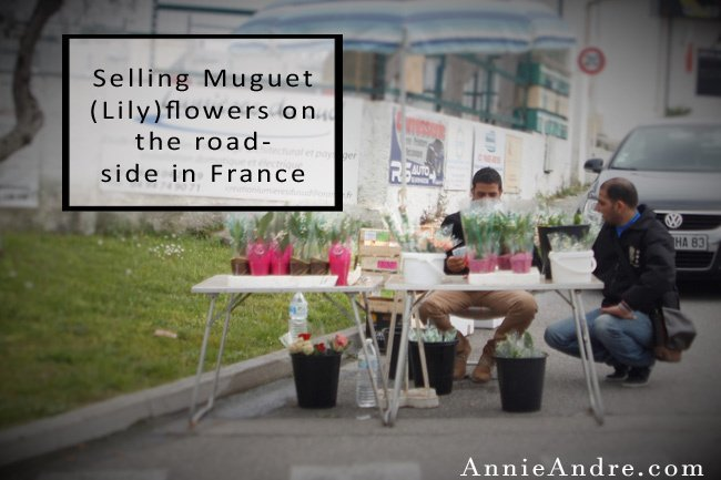 In celebration of May Day, called La Fete du Muguet in French, the government allows anyone to sell Lily of the valley flowers and roses on the streets without a license and tax-free.