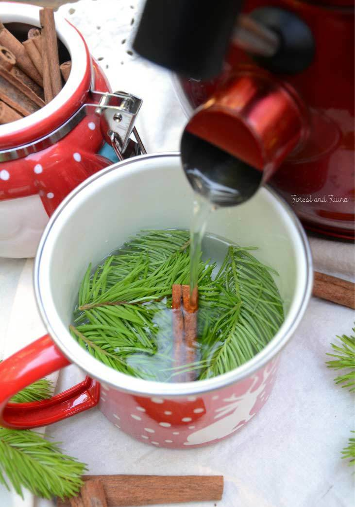 Fir Tree Tea recipe
