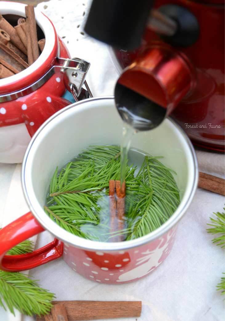 Fir Tree Tea recipe