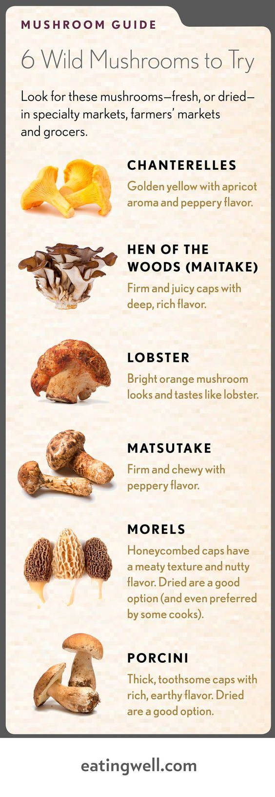mushrooms to buy or forage for in France