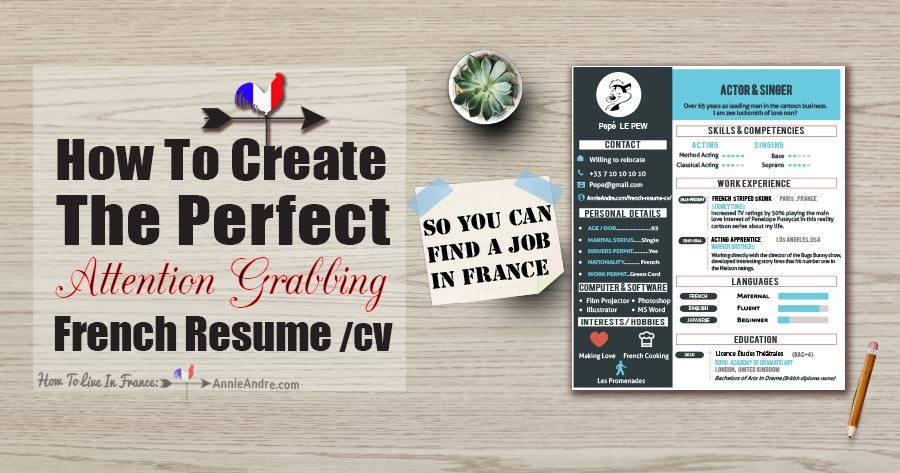 infographic  tips on how to create the perfect french resume  cv