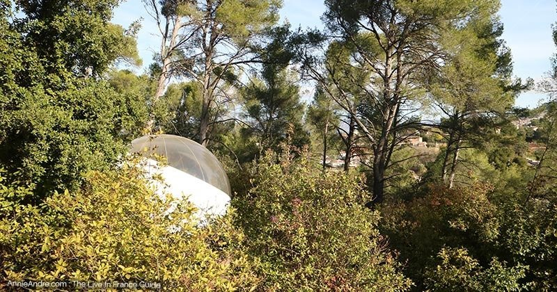 each bubble tent is secluded by a little distance and natural coverage of trees
