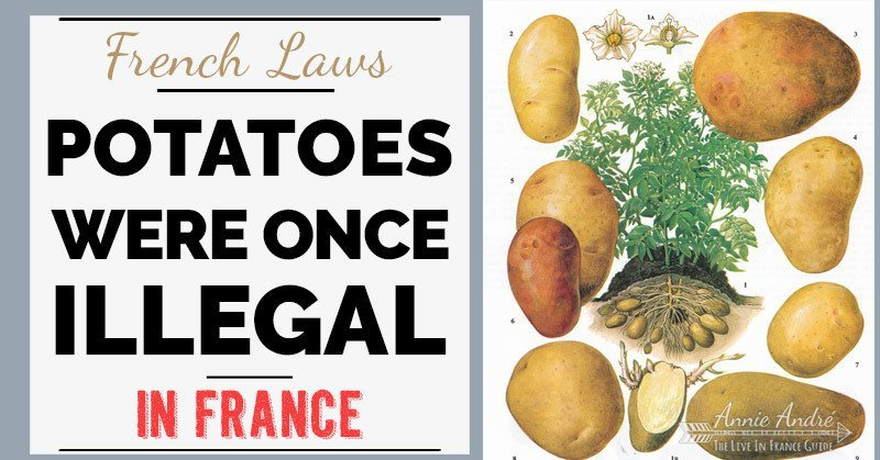 Potatoes were once illegal to eat and grow in France
