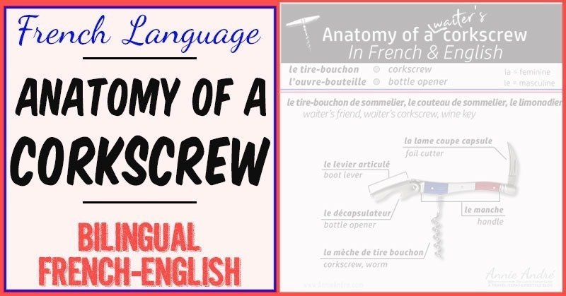 Anatomy of a waiter's friend: corkscrew parts in French infographic